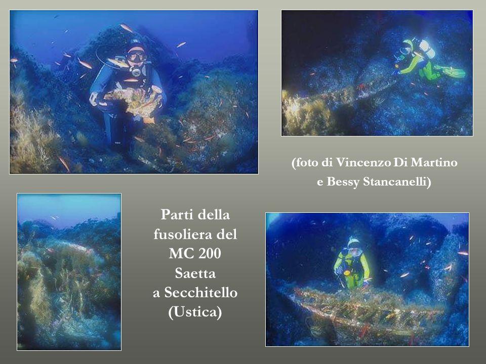 (foto di Vincenzo Di Martino e Bessy Stancanelli) Parti della fusoliera del MC 200 Saetta a Secchitello (Ustica)