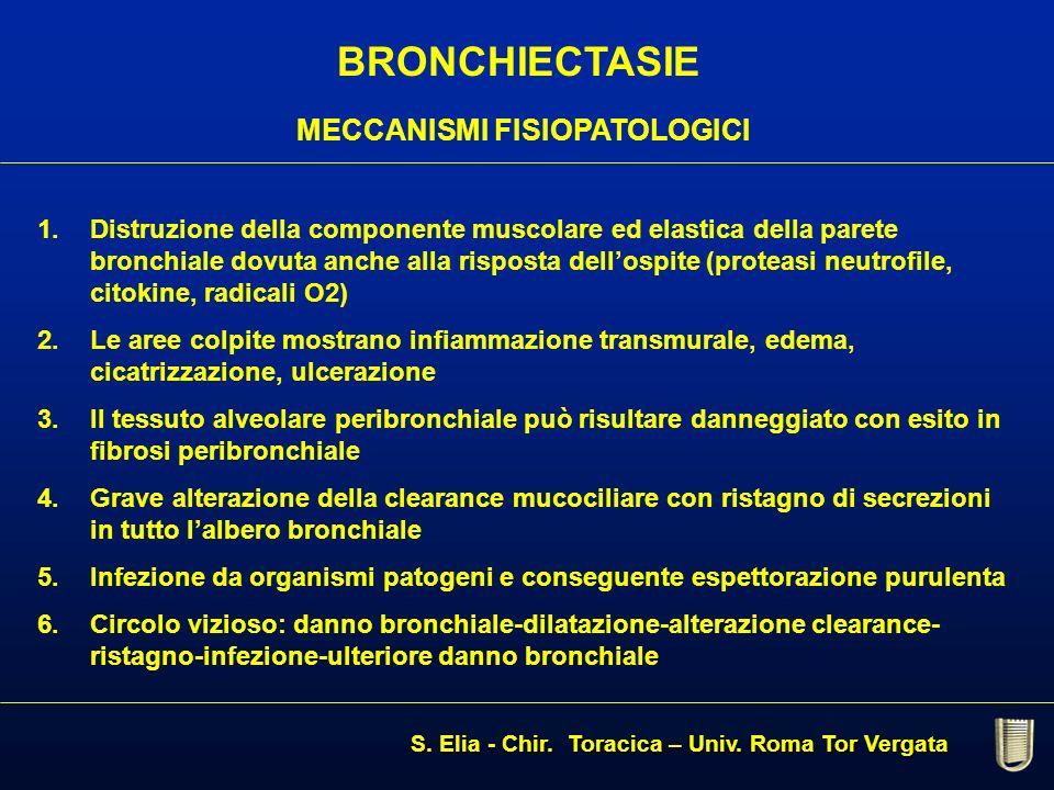 BRONCHIECTASIE MECCANISMI FISIOPATOLOGICI 1. 1.Distruzione della componente muscolare ed elastica della parete bronchiale dovuta anche alla risposta d