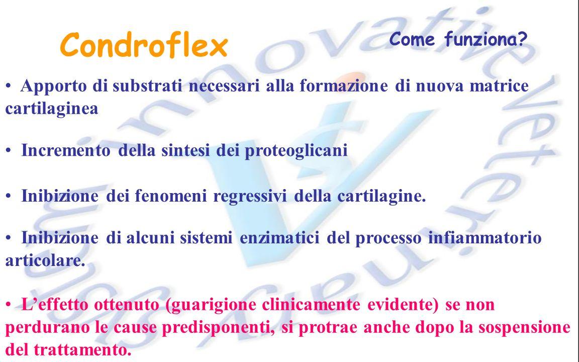 Condroflex Come funziona? Apporto di substrati necessari alla formazione di nuova matrice cartilaginea Incremento della sintesi dei proteoglicani Inib