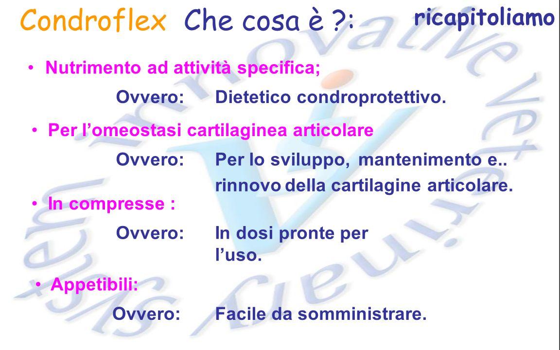 Condroflex Che cosa è ?: Nutrimento ad attività specifica; Per lomeostasi cartilaginea articolare Ovvero: Per lo sviluppo,mantenimento e.. rinnovodell