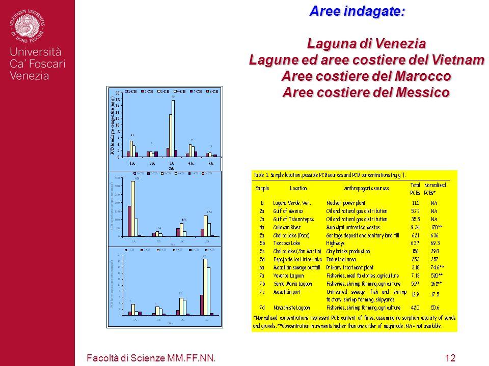 Facoltà di Scienze MM.FF.NN.12 Aree indagate: Laguna di Venezia Lagune ed aree costiere del Vietnam Aree costiere del Marocco Aree costiere del Messic