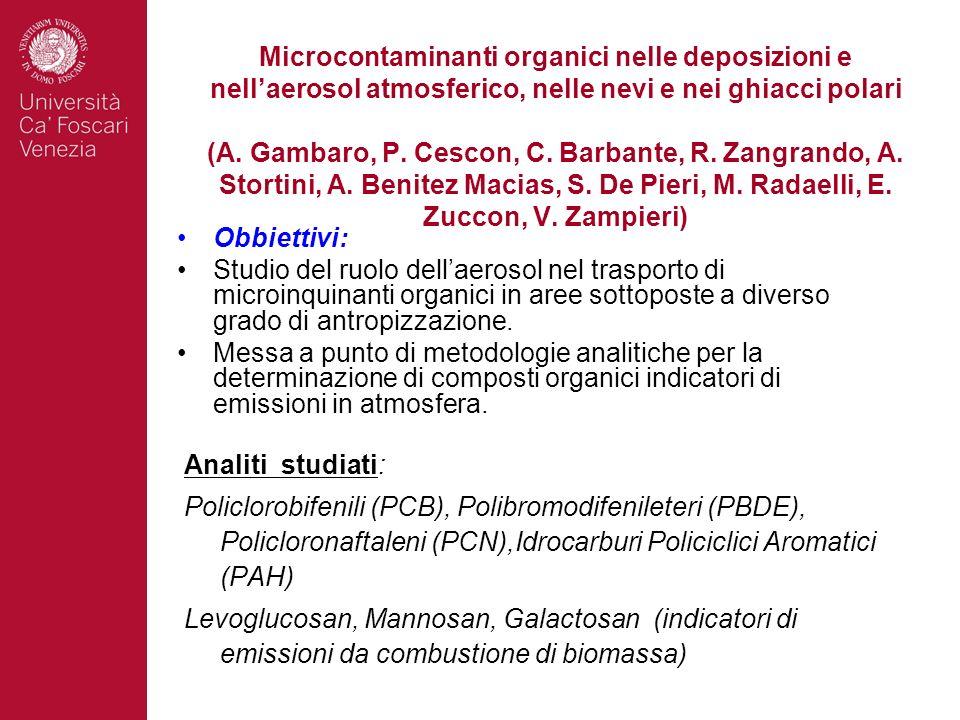 Microcontaminanti organici nelle deposizioni e nellaerosol atmosferico, nelle nevi e nei ghiacci polari (A. Gambaro, P. Cescon, C. Barbante, R. Zangra