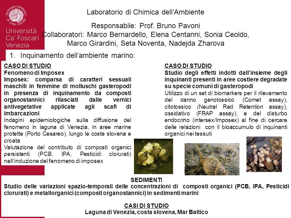 Laboratorio di Chimica dellAmbiente Responsabile: Prof. Bruno Pavoni Collaboratori: Marco Bernardello, Elena Centanni, Sonia Ceoldo, Marco Girardini,