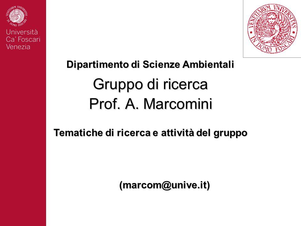 Gruppo di ricerca Prof. A. Marcomini (marcom@unive.it) Dipartimento di Scienze Ambientali Tematiche di ricerca e attività del gruppo