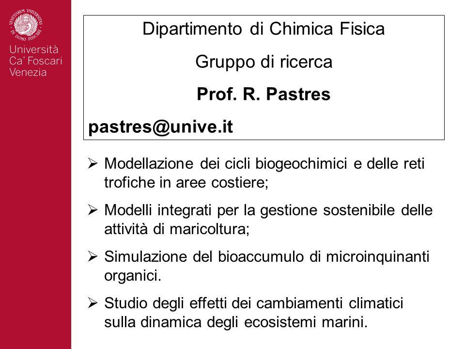 Dipartimento di Chimica Fisica Gruppo di ricerca Prof. R. Pastres pastres@unive.it Modellazione dei cicli biogeochimici e delle reti trofiche in aree