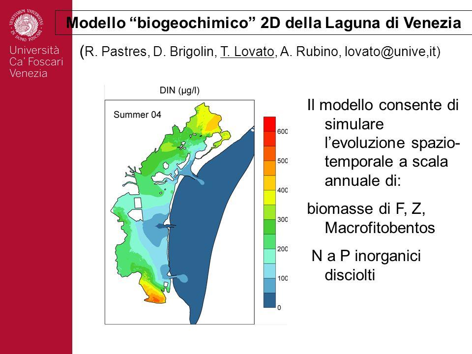 Modello biogeochimico 2D della Laguna di Venezia Il modello consente di simulare levoluzione spazio- temporale a scala annuale di: biomasse di F, Z, M