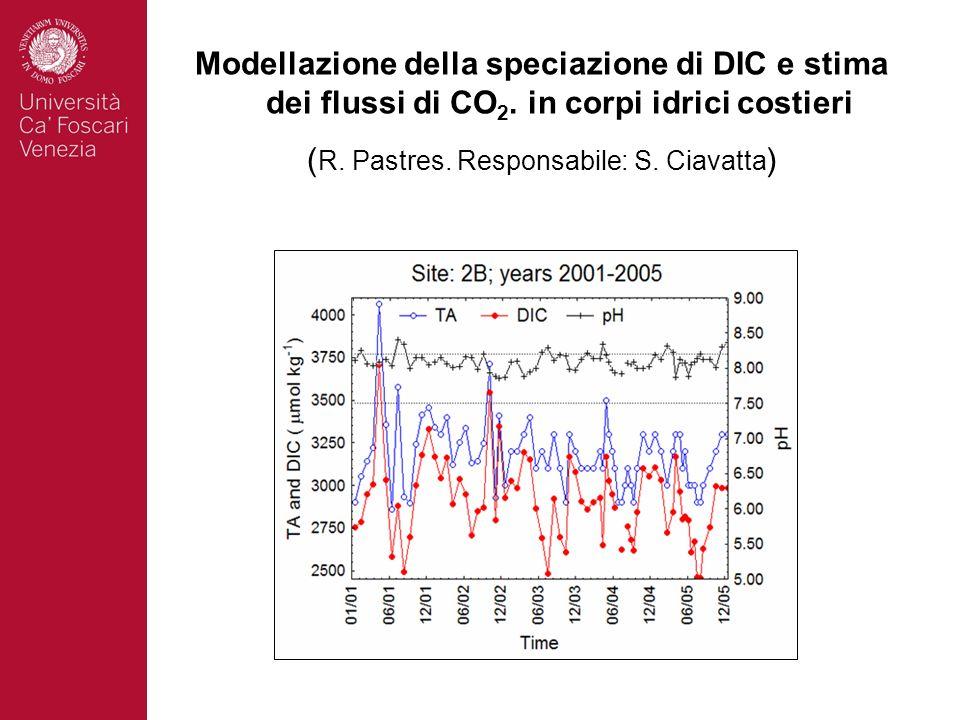 Modellazione della speciazione di DIC e stima dei flussi di CO 2. in corpi idrici costieri ( R. Pastres. Responsabile: S. Ciavatta )