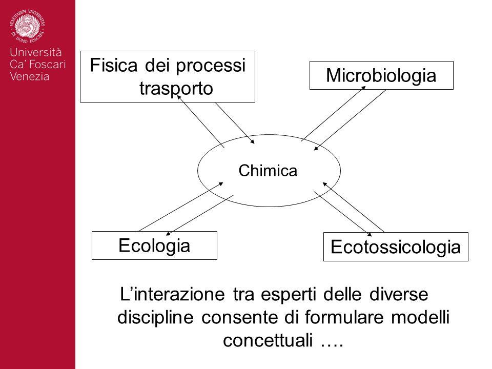 Chimica Ecologia Ecotossicologia Fisica dei processi trasporto Microbiologia Linterazione tra esperti delle diverse discipline consente di formulare m
