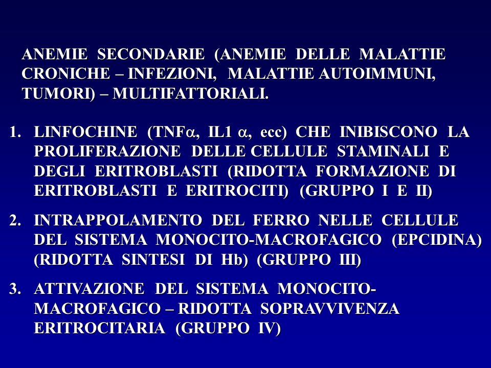 ANEMIE SECONDARIE (ANEMIE DELLE MALATTIE CRONICHE – INFEZIONI, MALATTIE AUTOIMMUNI, TUMORI) – MULTIFATTORIALI. 1.LINFOCHINE (TNF, IL1, ecc) CHE INIBIS