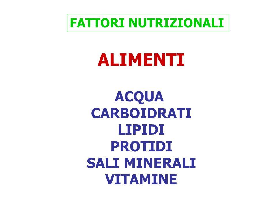 ALIMENTI ACQUA CARBOIDRATI LIPIDI PROTIDI SALI MINERALI VITAMINE FATTORI NUTRIZIONALI