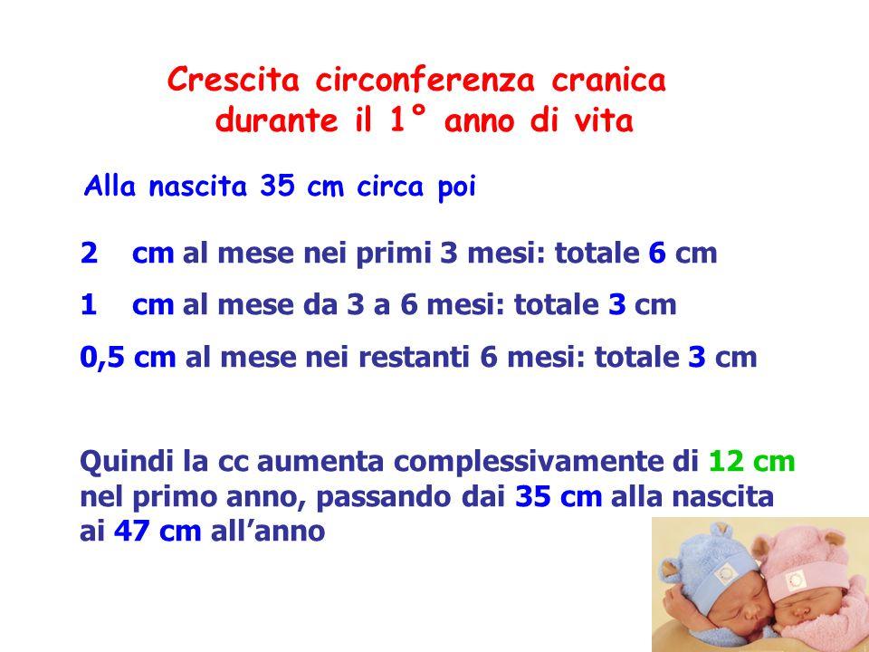 2 cm al mese nei primi 3 mesi: totale 6 cm 1 cm al mese da 3 a 6 mesi: totale 3 cm 0,5 cm al mese nei restanti 6 mesi: totale3 cm Quindi la cc aumenta