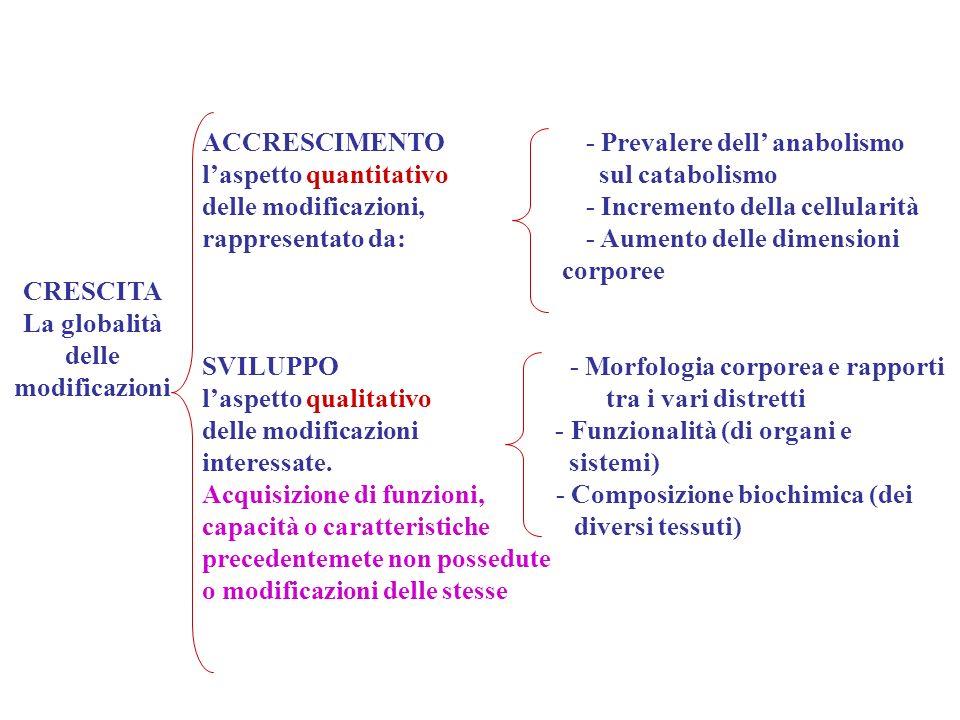 LATTE MATERNO Risponde alle esigenze nutrizionali e alle limitate capacità digestive e metaboliche Breastfeeding and the Use of Human Milk American Academy of Pediatrics PEDIATRICS 2005;115(2):496-501