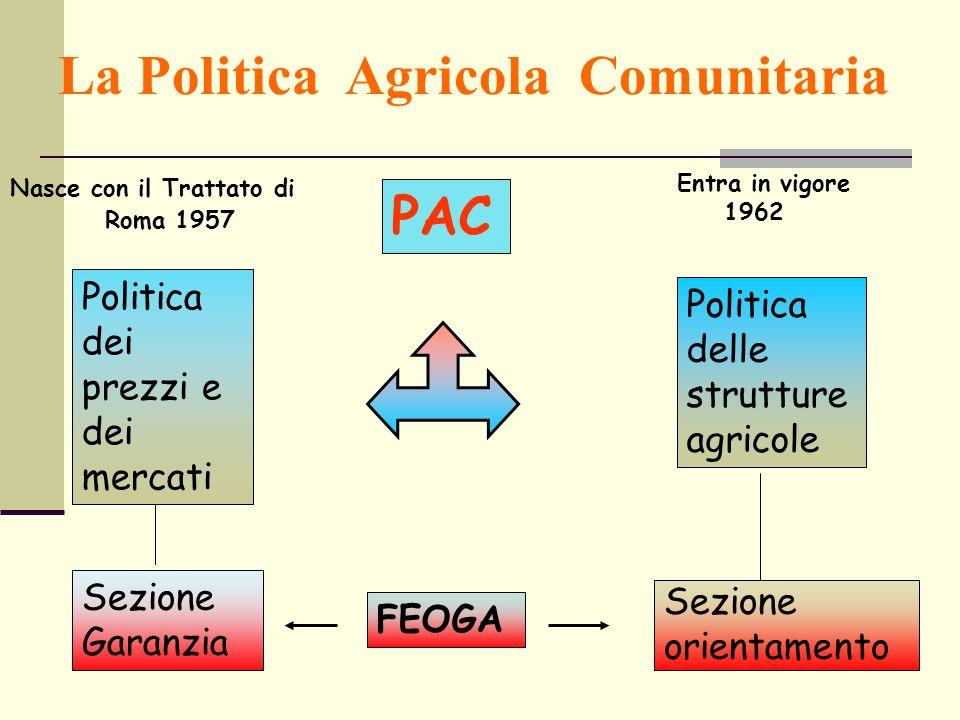 La Politica Agricola Comunitaria Nasce con il Trattato di Roma 1957 Entra in vigore 1962 Politica dei prezzi e dei mercati Sezione Garanzia PAC FEOGA Politica delle strutture agricole Sezione orientamento