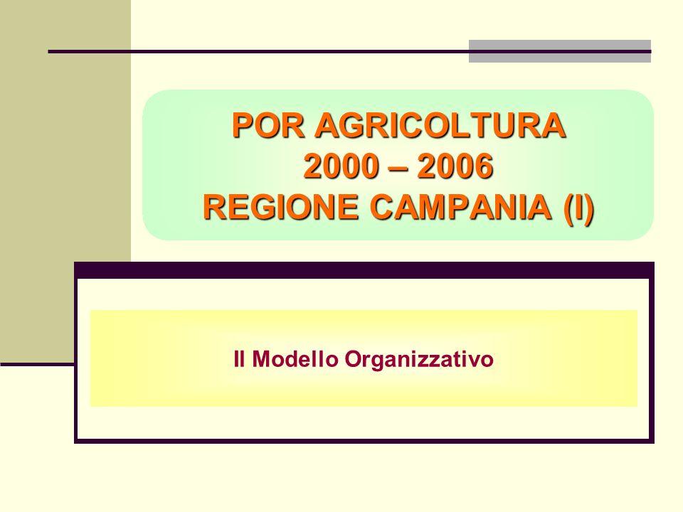 POR AGRICOLTURA 2000 – 2006 REGIONE CAMPANIA (I) Il Modello Organizzativo