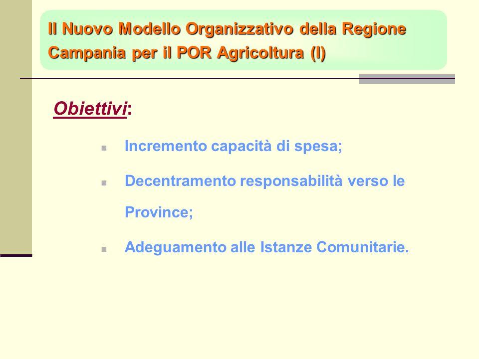 Il Nuovo Modello Organizzativo della Regione Campania per il POR Agricoltura (I) Obiettivi: Incremento capacità di spesa; Decentramento responsabilità verso le Province; Adeguamento alle Istanze Comunitarie.
