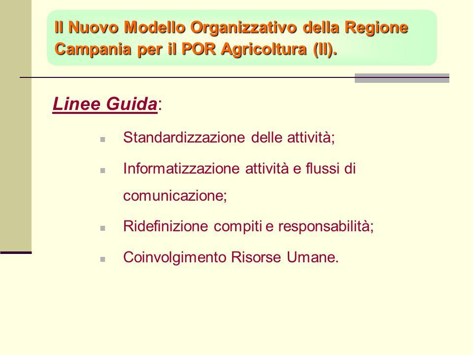 Linee Guida: Standardizzazione delle attività; Informatizzazione attività e flussi di comunicazione; Ridefinizione compiti e responsabilità; Coinvolgimento Risorse Umane.