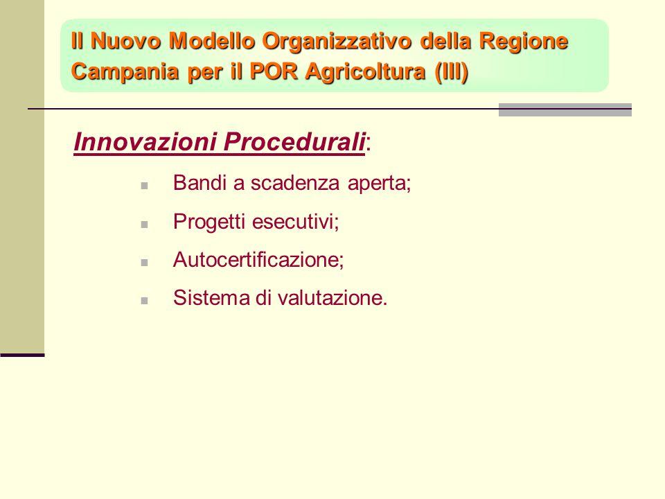 Innovazioni Procedurali: Bandi a scadenza aperta; Progetti esecutivi; Autocertificazione; Sistema di valutazione.