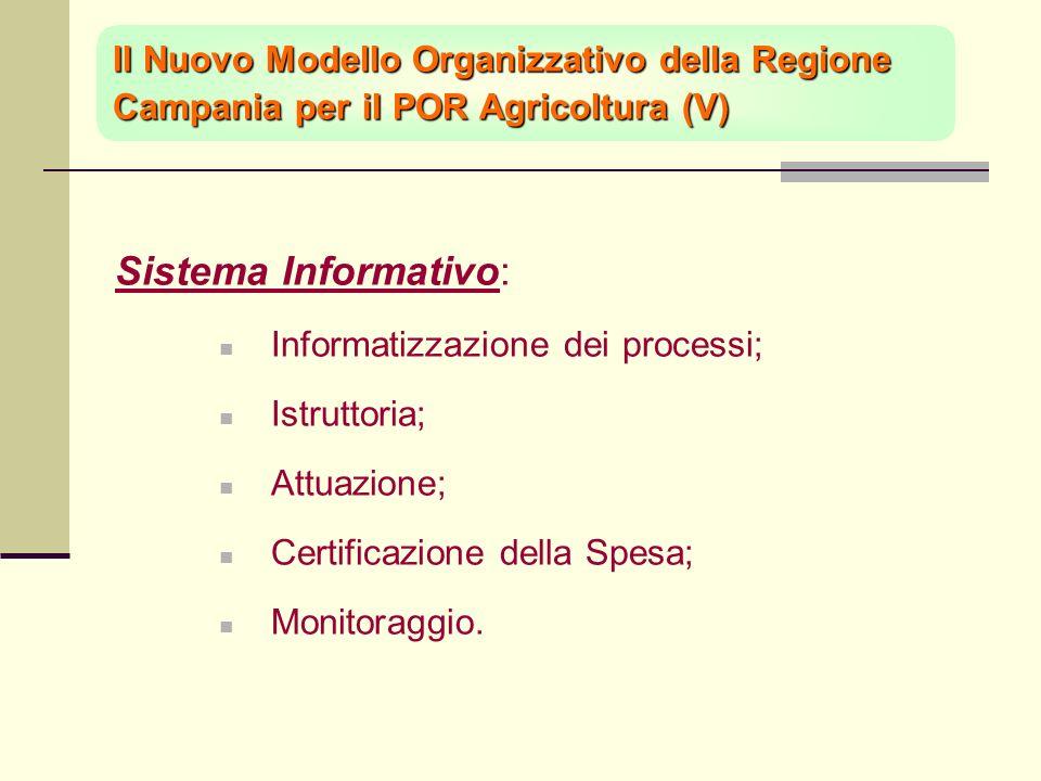 Sistema Informativo: Informatizzazione dei processi; Istruttoria; Attuazione; Certificazione della Spesa; Monitoraggio.