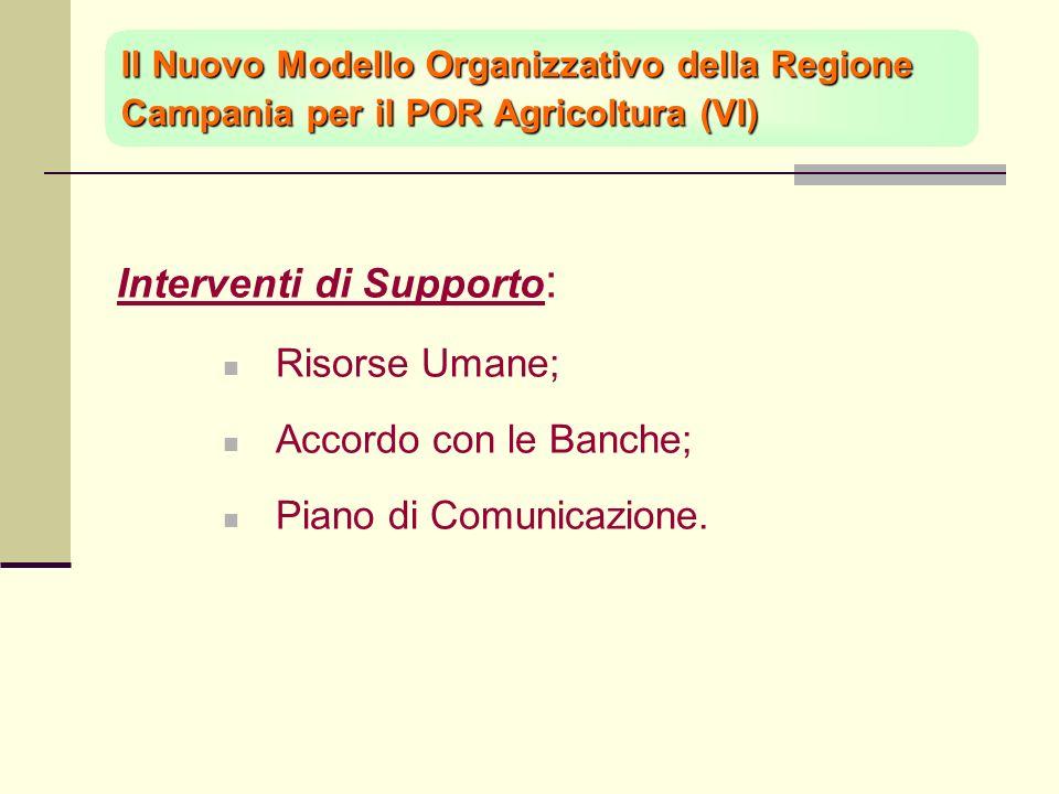 Interventi di Supporto : Risorse Umane; Accordo con le Banche; Piano di Comunicazione.