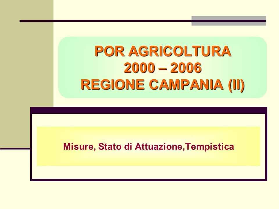 POR AGRICOLTURA 2000 – 2006 REGIONE CAMPANIA (II) Misure, Stato di Attuazione,Tempistica
