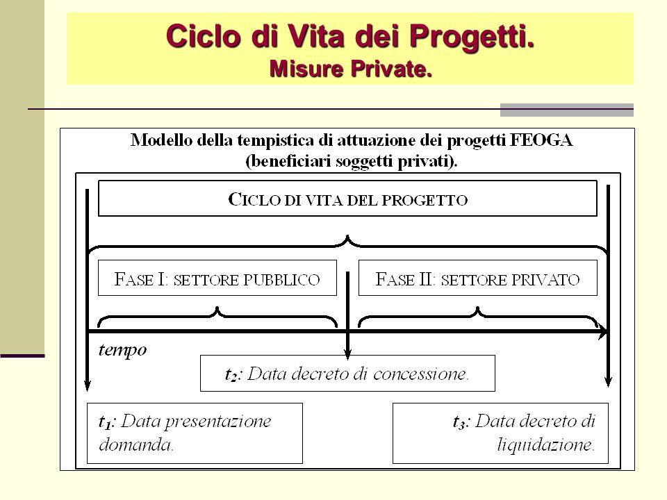 Ciclo di Vita dei Progetti. Misure Private.