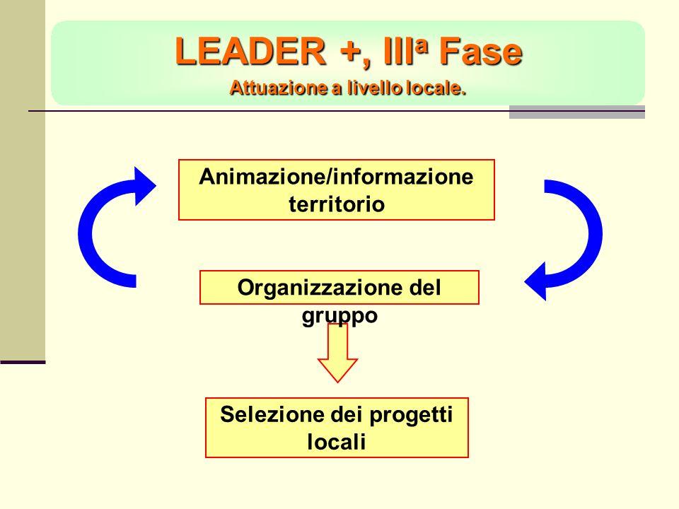 LEADER +, III a Fase Attuazione a livello locale.