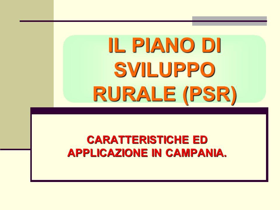 IL PIANO DI SVILUPPO RURALE (PSR) CARATTERISTICHE ED APPLICAZIONE IN CAMPANIA.
