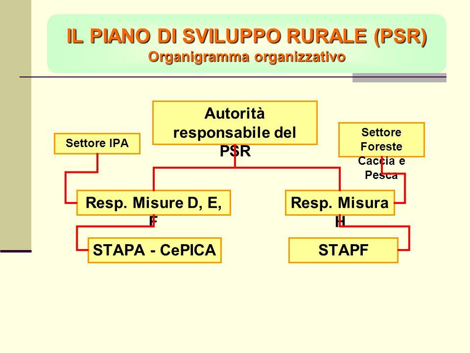 IL PIANO DI SVILUPPO RURALE (PSR) Organigramma organizzativo Resp.