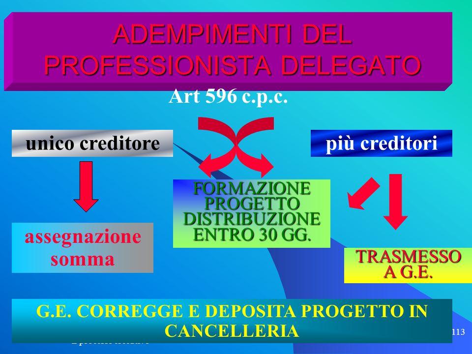 il processo esecutivo 113 ADEMPIMENTI DEL PROFESSIONISTA DELEGATO FORMAZIONE PROGETTO DISTRIBUZIONE ENTRO 30 GG. Art 596 c.p.c. TRASMESSO A G.E. unico