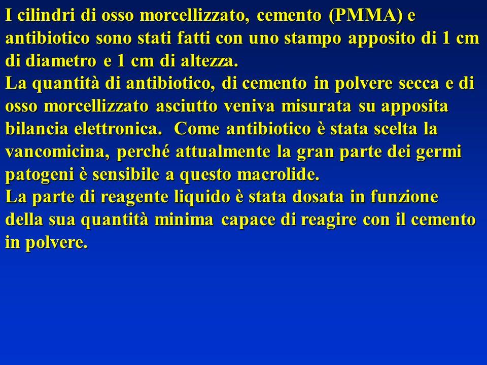 I cilindri di osso morcellizzato, cemento (PMMA) e antibioticosono stati fatti con uno stampo apposito di 1 cm di diametro e 1 cm di altezza.