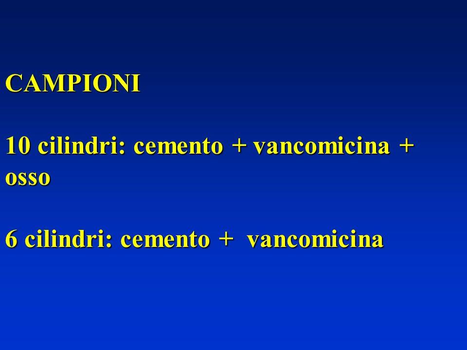 CAMPIONI 10 cilindri: cemento + vancomicina + osso 6 cilindri: cemento + vancomicina