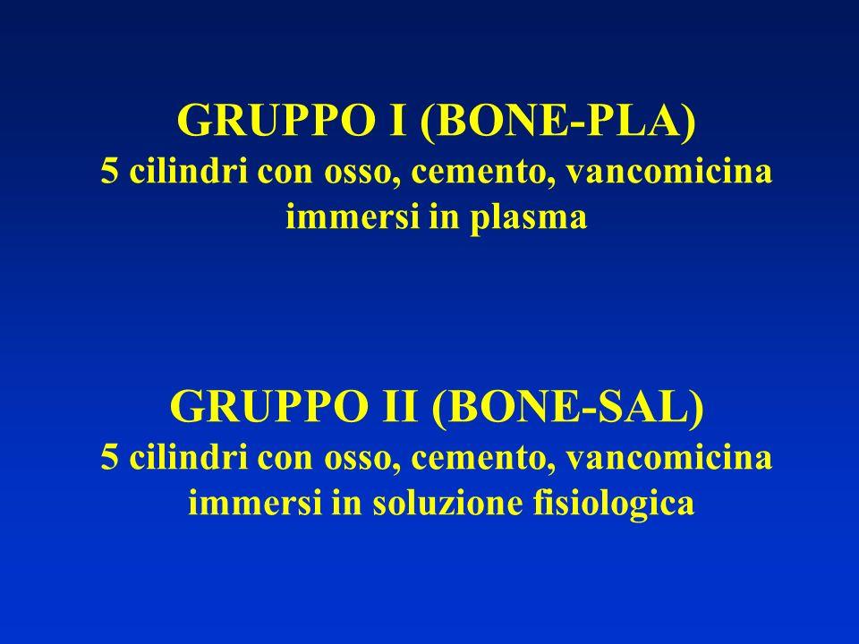 GRUPPO I (BONE-PLA) 5 cilindri con osso, cemento, vancomicina immersi in plasma GRUPPO II (BONE-SAL) 5 cilindri con osso, cemento, vancomicina immersi