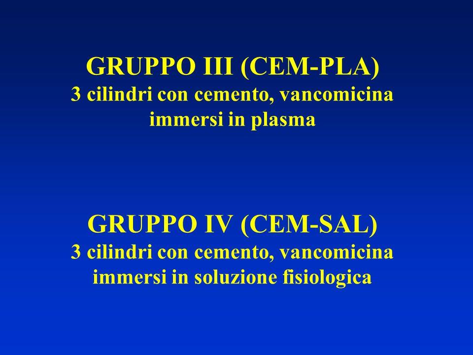 GRUPPO III (CEM-PLA) 3 cilindri con cemento, vancomicina immersi in plasma GRUPPO IV (CEM-SAL) 3 cilindri con cemento, vancomicina immersi in soluzion