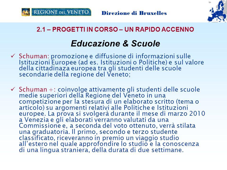Schuman: promozione e diffusione di informazioni sulle Istituzioni Europee (ad es.