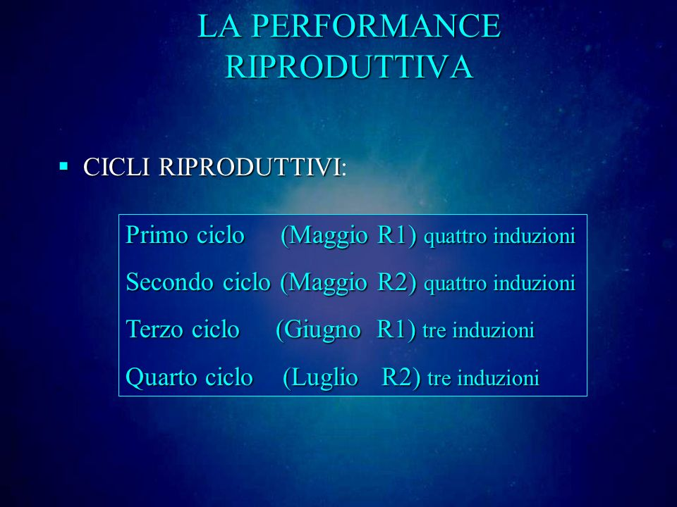 LA PERFORMANCE RIPRODUTTIVA CICLI RIPRODUTTIVI CICLI RIPRODUTTIVI: Primo ciclo (Maggio R1) quattro induzioni Secondo ciclo (Maggio R2) quattro induzioni Terzo ciclo (Giugno R1) tre induzioni Quarto ciclo (Luglio R2) tre induzioni