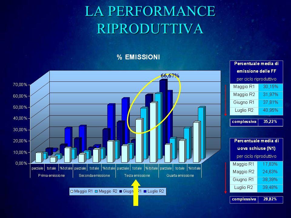 LA PERFORMANCE RIPRODUTTIVA 66,67%