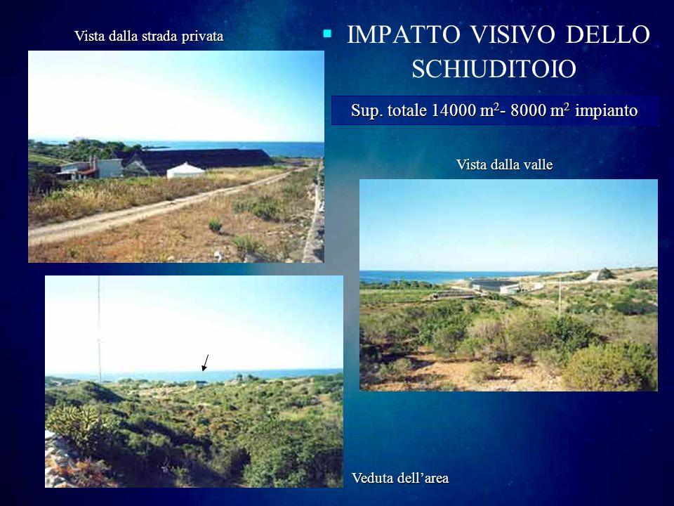 IMPATTO VISIVO DELLO SCHIUDITOIO Vista dalla strada privata Vista dalla valle Veduta dellarea Sup. totale 14000 m 2 - m 2 - 8000 m2 m2 m2 m2 impianto