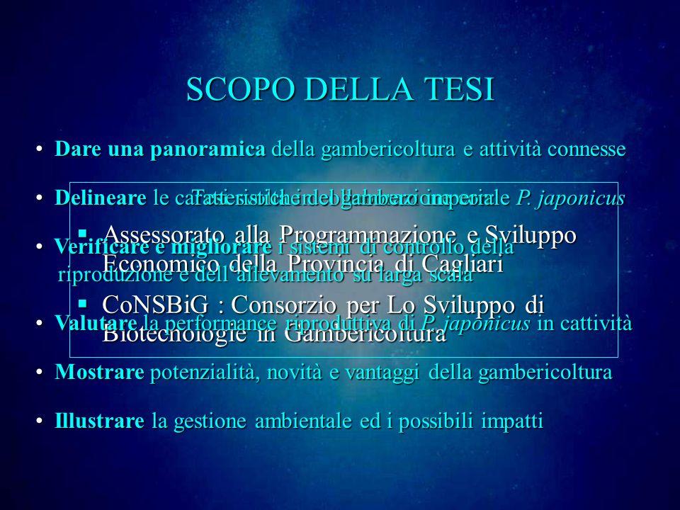 SCOPO DELLA TESI Tesi svolta in collaborazione con: Assessorato alla Programmazione e Sviluppo Economico della Provincia di Cagliari Assessorato alla