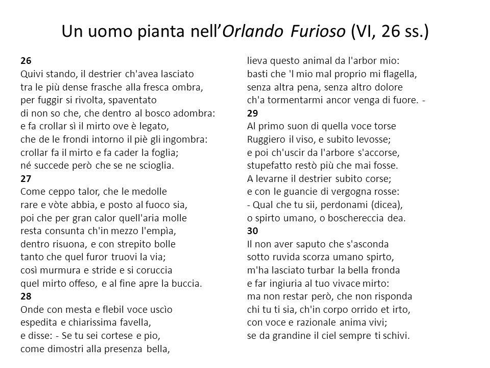 Un uomo pianta nellOrlando Furioso (VI, 26 ss.) 26 Quivi stando, il destrier ch'avea lasciato tra le più dense frasche alla fresca ombra, per fuggir s