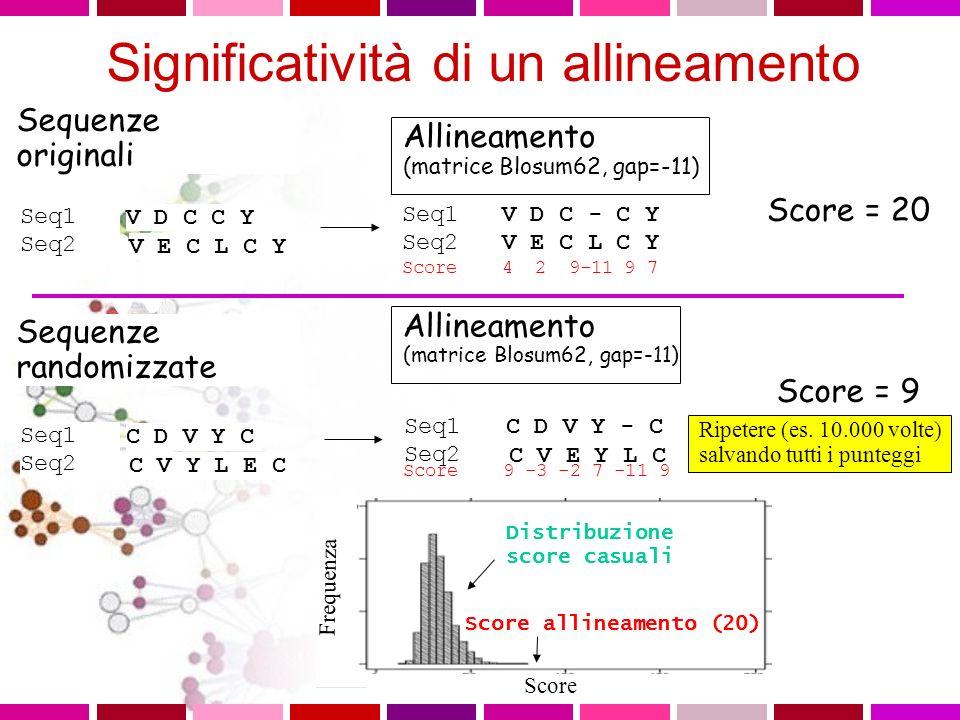 Allineamento (matrice Blosum62, gap=-11) Seq1 V D C - C Y Seq2 V E C L C Y Score 4 2 9-11 9 7 Score = 20 Sequenze randomizzate Seq1 Seq2 C D V Y C C V