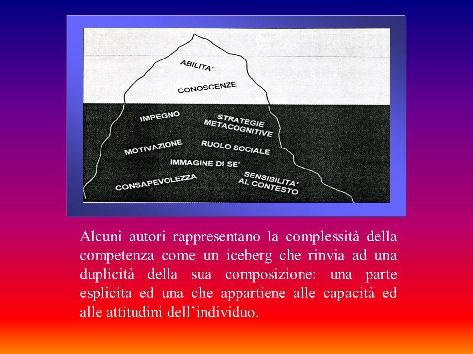 Alcuni autori rappresentano la complessità della competenza come un iceberg che rinvia ad una duplicità della sua composizione: una parte esplicita ed