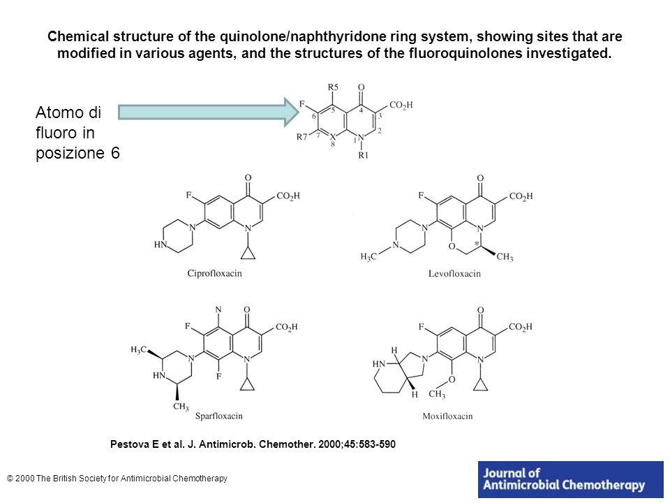 Resistenza batterica alle tetracicline