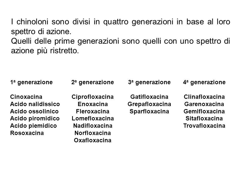 I chinoloni sono divisi in quattro generazioni in base al loro spettro di azione. Quelli delle prime generazioni sono quelli con uno spettro di azione