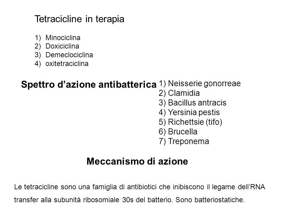 Tetracicline in terapia 1)Minociclina 2)Doxiciclina 3)Demeclociclina 4)oxitetraciclina Spettro dazione antibatterica 1) Neisserie gonorreae 2) Clamidia 3) Bacillus antracis 4) Yersinia pestis 5) Richettsie (tifo) 6) Brucella 7) Treponema Meccanismo di azione Le tetracicline sono una famiglia di antibiotici che inibiscono il legame dellRNA transfer alla subunità ribosomiale 30s del batterio.