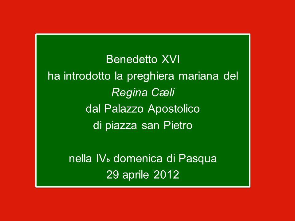 Benedetto XVI ha introdotto la preghiera mariana del Regina Cæli dal Palazzo Apostolico di piazza san Pietro nella IV b domenica di Pasqua 29 aprile 2012 Benedetto XVI ha introdotto la preghiera mariana del Regina Cæli dal Palazzo Apostolico di piazza san Pietro nella IV b domenica di Pasqua 29 aprile 2012