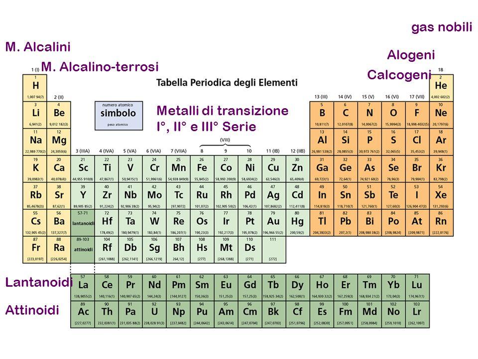 M.Alcalini M.