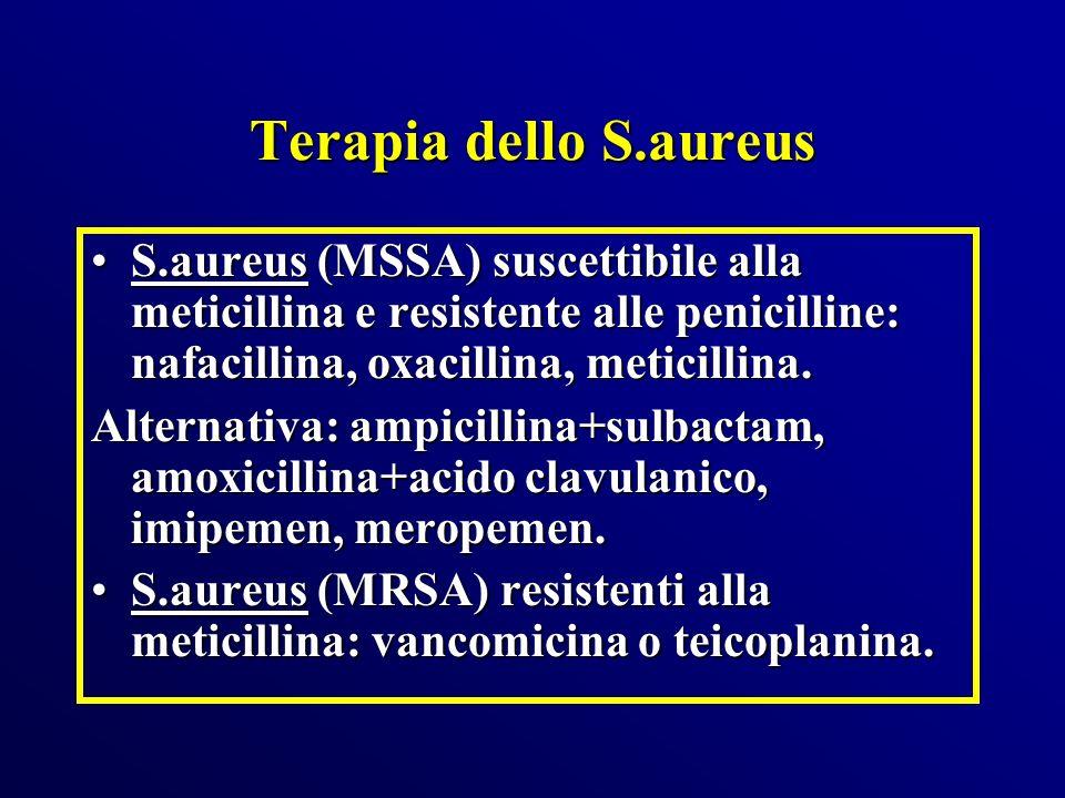 Terapia dello S.aureus S.aureus (MSSA) suscettibile alla meticillina e resistente alle penicilline: nafacillina, oxacillina, meticillina.S.aureus (MSS