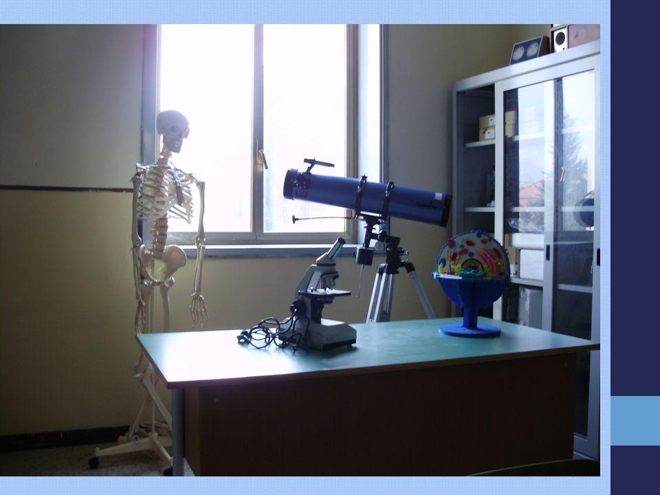 Laboratorio linguistico Plesso Don Bosco My English time PON B-1.B - F.E.S.R. – 2008– 514 Laboratorio matematico- scientifico -Plesso Don Bosco La Gai