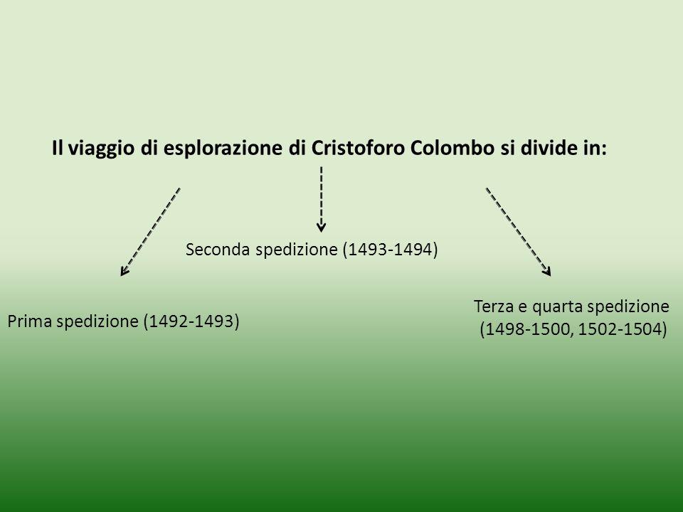 Il viaggio di esplorazione di Cristoforo Colombo si divide in: Prima spedizione (1492-1493) Seconda spedizione (1493-1494) Terza e quarta spedizione (