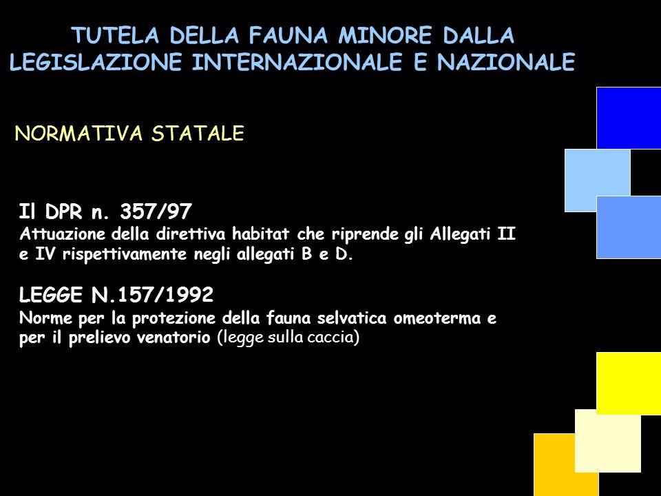 TUTELA DELLA FAUNA MINORE DALLA LEGISLAZIONE INTERNAZIONALE E NAZIONALE Il DPR n. 357/97 Attuazione della direttiva habitat che riprende gli Allegati
